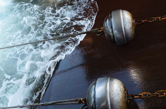 Политика в области устойчивого рыболовства